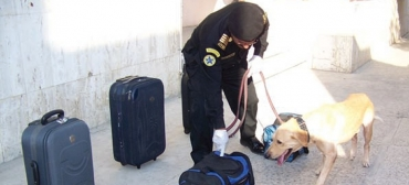 K-9 SECURITY SERVICE